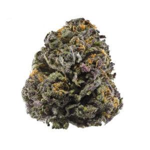 grandaddy purple strain